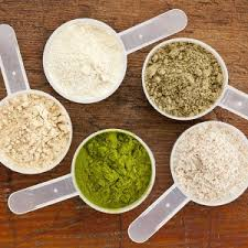 top nutraceutical protein powder company franchise